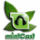Logo for mintCast