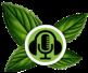 Logo for mintCast